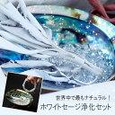 〔10%クーポン配布中/P5倍〕 送料無料  天然石や空間を浄化 ホワイトセ...