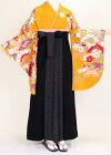 【着物・袴セット】S124/明からし新古典/黒地水玉