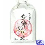【TVで紹介された話題の新品種】30年産新米 愛知県のお米 女神のほほえみ 5キロ入り