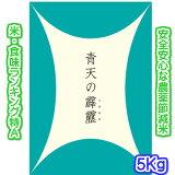 【特別栽培米】29年産新米 青森県のプレミアム米 青天の霹靂(へきれき) 5キロ入り