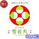 【TVで紹介された品種】令和元年産 山形県 雪若丸 10Kg(5キロ×2袋)