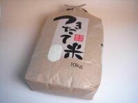 米もち米白米10kg送料無料※北海道・九州は別途送料400円※沖縄は別途送料1,000円