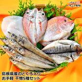 お中元 ギフト のどぐろ入り!近海魚 国産干物 詰合せ セットのどぐろ ( ノドグロ )・祝い鯛 ( れんこ鯛 )・白いか・カマス・あじセット5種でお届けします。国産 干物 (旬干し)セット送料無料 敬老の日ギフト お誕生日ギフト 内祝い ギフト あす楽