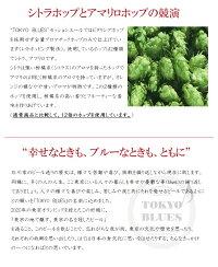 東京ブルースセッションエール330ml×6本/TOKYOBLUESSessionAle