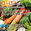 【送料無料!新鮮!】食べて応援!生産者応援プロジェクト!訳ありアウトレット福袋!数量限定!野菜&果物 ...