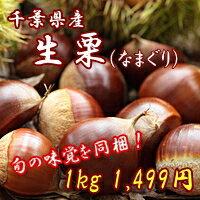 秋の味覚!旬の生栗を入荷致しました!甘くておいしいです!栗きんとんや栗ご飯に最適です。千...