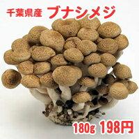 千葉県鴨川市産ブナシメジ たっぷり約180g