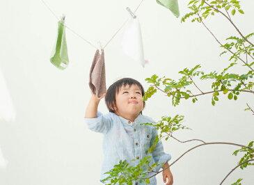 旭紡績 いとやのタオル タオルソムリエのこだわり。ペルー綿100% ハンカチタオル 日本製 ミニタオル 幼稚園・保育園タオル