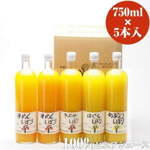伊藤農園 100%ピュアジュース みかんジュース・オレンジジュース 750ml×5本 [有田み…