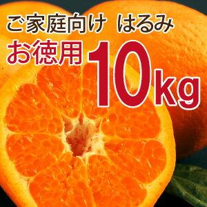 【訳あり】お徳用 はるみ10kg [ノーワックス・ノーブラッシング・防腐剤不使用・産地直送][…