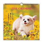 日本ホールマーク明日への一歩犬2018年カレンダー壁掛け大726249