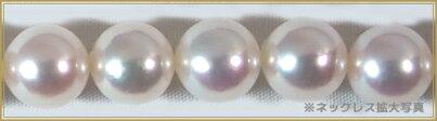 あこや真珠花珠2点セット<8mm>