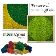 モスフレームダブル/モステラモスTERRAMOSSインテリアグリーングリーンパネルウォールフレームウォールグリーン壁掛け枯れない苔苔プリザーブドグリーンプリザーブドフラワー壁面緑化パネル空気清浄