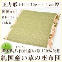 【純国産】日本製いぐさ100%座布団(45×45cm)正方形へたりにくい座布団固綿使用二重構造縁部【綿100%】オックス生地太番手しっかり破れにくいイ草いぐさい草クッション和風洋風おしゃれ座布団