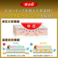 【送料無料】公式13層だからできる新しい体圧拡散法!「雲のやすらぎ極マットレス」(シングルサイズ)【itty202003】