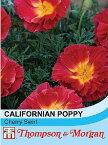 【輸入種子】Thompson & Morgan Californian Poppy Cherry Swirl カリフォルニアポピー(エスコルシア) チェリー・スワール トンプソン&モーガン