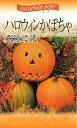 【種子】ハロウィンかぼちゃ福花園種苗のタネ