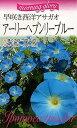 【種子】早咲き西洋アサガオアーリーヘブンリーブルー福花園種苗のタネ