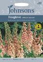 【輸入種子】Johnsons SeedsDigitalis Apricot Delightジギタリス(フォックスグローブ)アプリコット・デライトジョンソンズシード