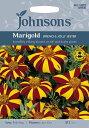 【輸入種子】Johnsons SeedsMarigold (