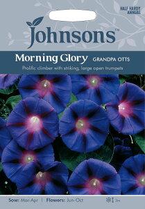 【輸入種子】鮮やかなルビー色の星型のマークがはいるあさがお!Johnsons SeedsMorning Glory G...