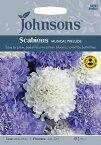 【輸入種子】Johnsons SeedsScabious Musical Preludeスカビオーサ・ミュージカル・プレリュードジョンソンズシード