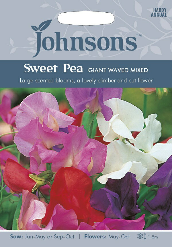種子, 花の種子 Johnsons Seeds Sweet Pea GIANT WAVED MIXED