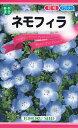 【種子】ネモフィラトーホクのタネ