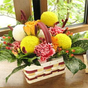 ≪送料無料!≫秋のお誕生日に、敬老の日に。秋色ピンポンマムの手つきバスケット・アレンジ(...