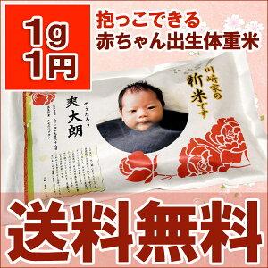 【新米】【送料無料】【出産内祝い】抱っこできる 出生体重米 丹後産コシヒカリ 27年産新米 内…