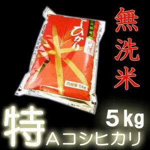 【無洗米】 22年産特A京都丹後産コシヒカリ100% 5kg 精米即日出荷【ポイント2倍】