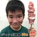 国産鶏肉 焼き鳥 鶏串 ジャンボ 冷凍 60本 送料込み(沖縄県は対象外) (焼鳥 やきとり ヤキトリ 焼き肉 焼肉) バーベキューセット