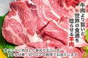 生ラム肉 ジンギスカン 肩ロース 焼肉 500g 自家製タレ付属 バーベキュー BBQ 焼肉セット 2