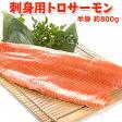 刺身用トロサーモン【まるごと半身 約1キロ】