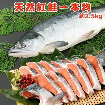 天然紅鮭一本物【約2.3キロ】送料無料