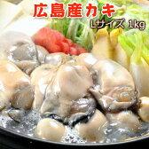 広島産カキ Lサイズ1キロ【35〜40粒】 送料無料