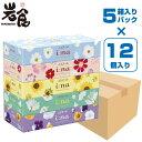 【送料無料】大王製紙エリエール イーナ ティッシュ 150組(300枚)×5箱パックx12個入り 【即日発送】