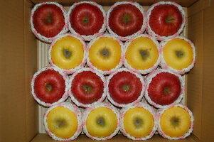 フルーツ・果物, りんご 424815kg 1112RCP