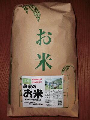 米・雑穀, 白米 ()10kg1RCP