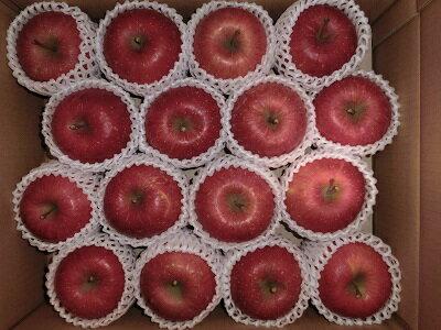 フルーツ・果物, りんご 424815kg12 1112RCP