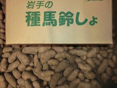 野菜・きのこ, ジャガイモ 10kg()10kgLMSRCP