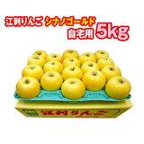 【JA江刺】岩手県江刺産りんごシナノゴールド5kg(約18玉/自宅用) 果物・フルーツ