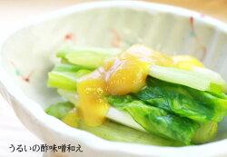 ウルイのからし味噌和え・和食レシピ