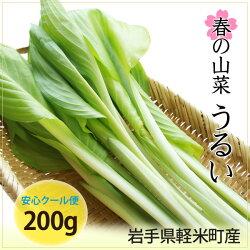 岩手県軽米町産山菜・うるい(ウルイ)200g