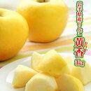 訳あり!送料無料!早生りんご・黄香3kg