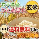 【送料無料】平成25年産 ひとめぼれ 岩手県紫波町産 完熟夕陽米(玄米)10kg
