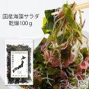 国産 乾燥海藻サラダ100g わかめ 茎わかめ 昆布 ふのり 赤とさか 白おご 送料無...