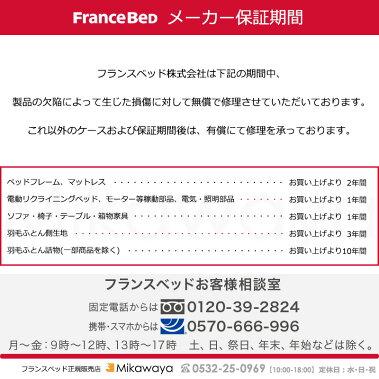 フランスベッドマットレス&ベッドフレームセットシングルPSF-301LG&DT-033francebed三河屋Mikawaya【FC1152】