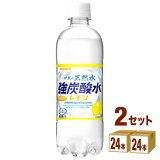 日本サンガリア 伊賀の天然水 強炭酸水 レモン 500 ml×24本×2ケース (48本) 飲料【送料無料※一部地域は除く】