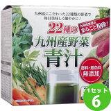 新日配薬品 新日配22種の九州産野菜青汁(3g×30袋)×6箱 食品